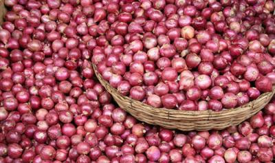 ONION FRESH 1 KG
