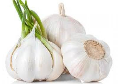 garlic 250 gm